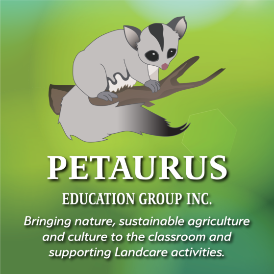 About Petaurus