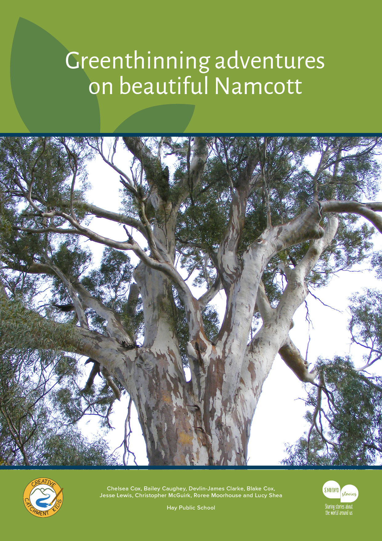 Book Cover - Greenthinning adventures on beautiful Namcott